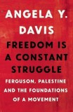 Angela Davis: Freedom Is a Constant Struggle. Ferguson,...